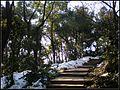 雪后雨晴栖霞岭上小径 - panoramio.jpg