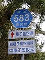 鹿児島県道583号IMGP1626.JPG