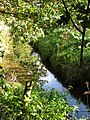 -2018-10-09 Drainage ditch next to small holding, Antingham.JPG