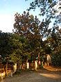 0469jfHoly Cross Parish Church School Sunset Barangay Caloocan Cityfvf 01.JPG