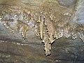 060 Joint-aligned ceiling speleothem, PohlAve 8 (8321963328).jpg