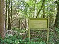080 Landévennec Bois du Loc'h.jpg