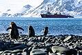 094-antartica-2017 62 (32763631084).jpg