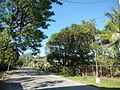 09668jfCuyapo Welcome Districts Roads Parks Center Nueva Ecijafvf 06.JPG