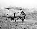 100 years of the RAF MOD 45163706.jpg