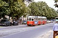105R19140683 Bereich Remise Speising, Strassenbahn Linie 62, Typ L 527, Typ l3 1741, Typ l3 1772.jpg