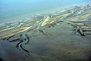 Creek (tidal) - Aerial photo of North Sea, tidal inlets from the Wadden Sea on Scharhörn