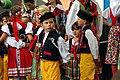 12.8.17 Domazlice Festival 098 (36387783962).jpg