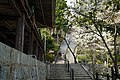 140412 Kiyomizu-dera Kato Hyogo pref Japan11s3.jpg