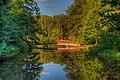 15-22-242, azalea bowl - panoramio.jpg