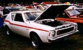 1973 AMC Gremlin X - white with Levi package.JPG