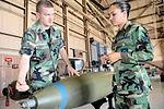 19th Weapons Squadron - Training.jpg