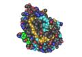 1B0F Human Neutrophil Elastase02.png