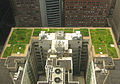 20080708 Chicago City Hall Green Roof Edit1.jpg