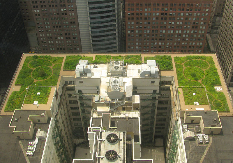 File:20080708 Chicago City Hall Green Roof Edit1.jpg
