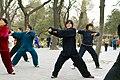 2010 CHINE (4547815207).jpg