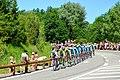 2014-07-16 Etape 11 du Tour de France. Peloton 3. Free image Spielvogel. No copyright.jpg