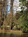 2015-07-09 12.39.05 Lago do Horto Florestal.jpg
