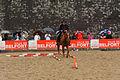 2015-08-23 16-17-11 rallye-equestre.jpg