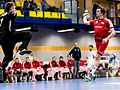 20170114 Handball AUT SUI 6283.jpg