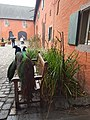 2020-12-12-Hike-to-Rheydt-Palace-and-its-surroundings.-Foto-17.jpg
