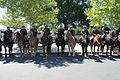 24.MountedPolice.NPOM.WDC.15May2017 (34569453620).jpg