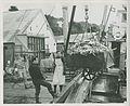 3-65. Seldovia - Unloading king crab catch off fishing boat (24940157925).jpg