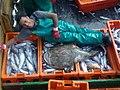 30052015587 aboard trawler African Queen.jpg