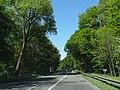 30926 Seelze, Germany - panoramio.jpg