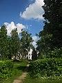 68-242-5017 новоселицький парк.jpg