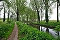 8340 Damme, Belgium - panoramio (1).jpg