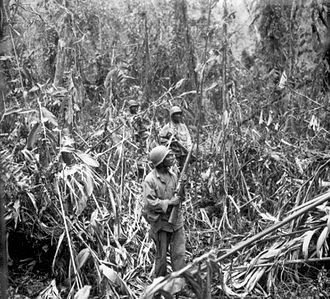 93rd Infantry Division (United States) - 1 May 1944, members of the 93rd Division on the Numa-Numa Trail, Bougainville.