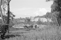 ASC Leiden - NSAG - van Es 2 - 005 - Nine round traditional white huts with straw pointed roofs on a lawn at Makere College - Kampala, Uganda - 29-11-1961 - 4-12-1961.tiff