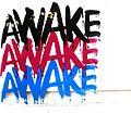 AWAKE (277639400).jpg
