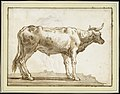 A Bullock Standing to the Right (on a Base) MET DT3237.jpg
