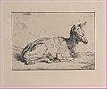A Doe, after Barye Met DP886966.jpg