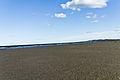 A Visit To Sandymount Strand (6051249456).jpg