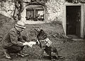 A WWI allied soldier bandages the paw of a Red Cross working dog in Flanders.jpg