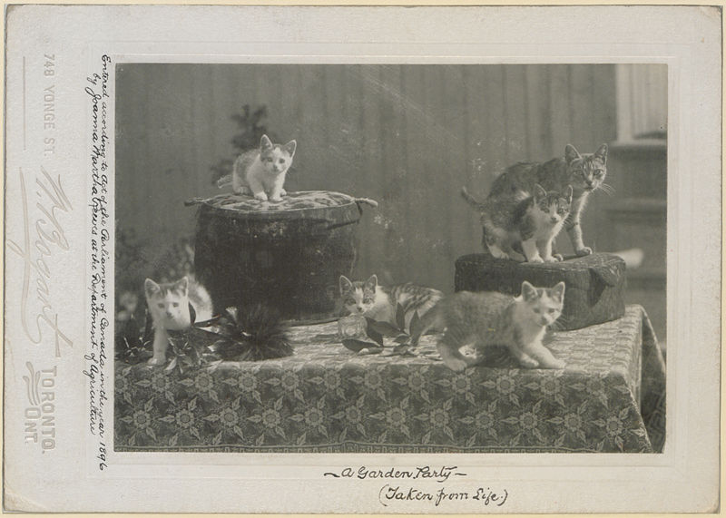 File:A garden party (taken from life) (HS85-10-8754).jpg