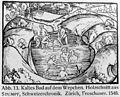 A healing bath, circa 1545. Wellcome M0007333.jpg