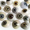 A selection of glass eyes from an opticians glas eye case. Wellcome L0036581.jpg
