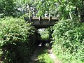 A shady bridge - geograph.org.uk - 516075.jpg