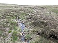 A tributary of the Crock Horn River - geograph.org.uk - 2423433.jpg