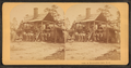 A turpentine still, N.C, by Littleton View Co..png