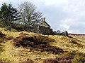 Abandoned croft, Little Rogart - geograph.org.uk - 712547.jpg