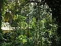 Aburi garden 1.jpg
