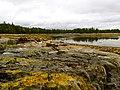 Acadia National Park (8111151921).jpg