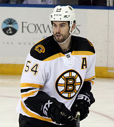 Adam McQuaid - Boston Bruins 2015.jpg