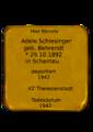 Adele Schlesinger.png