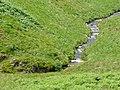 Afon Doethie Fawr near Ty'n Cornel, Ceredigion - geograph.org.uk - 1424149.jpg
